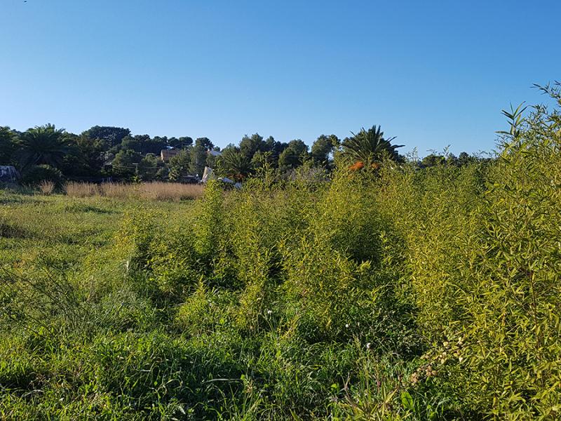 Terreno edificable en venta en javea